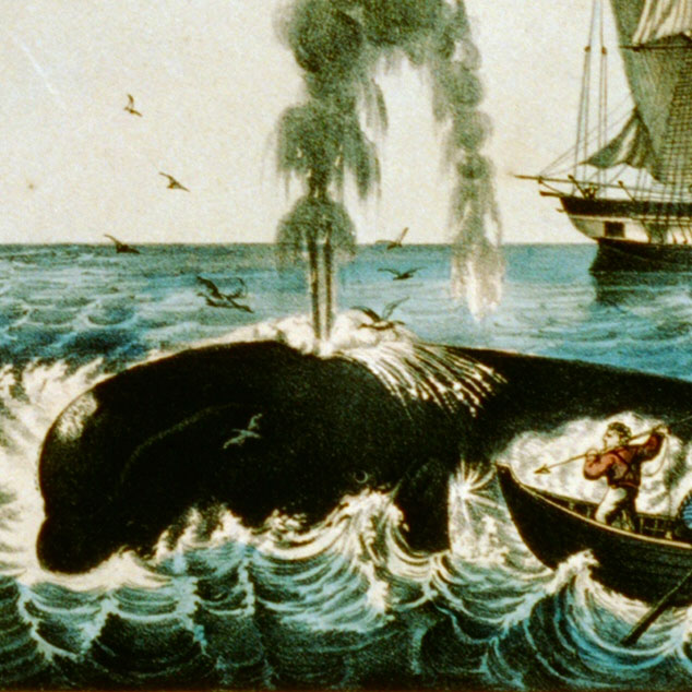 Engraving of a whaler harpooning a whale