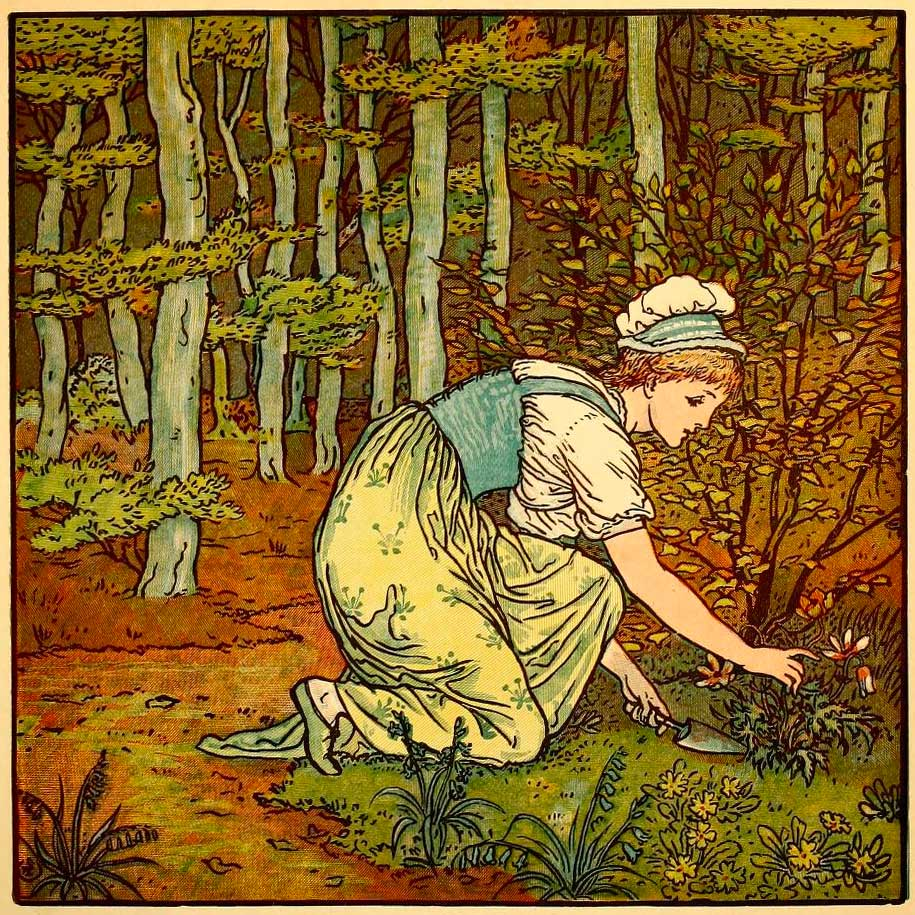 A young woman working in an herb garden